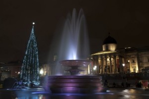 The Trafalgar Square Christmas tree is decorated with 500 white lights.