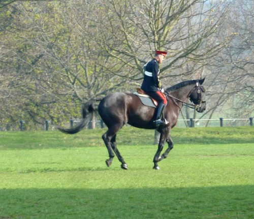 Household Cavalry Mounted Regiment Practice for Inspection
