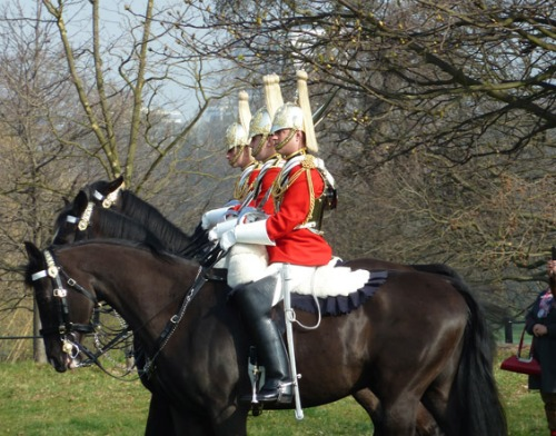London Household Cavalry in Hyde Park