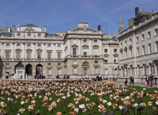 Spring Blossoms at the Somerset House in London