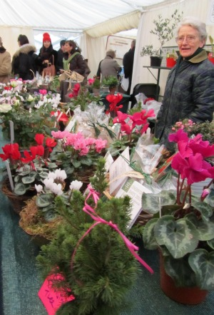 Chelsea Physic Garden Christmas Fair Flowers