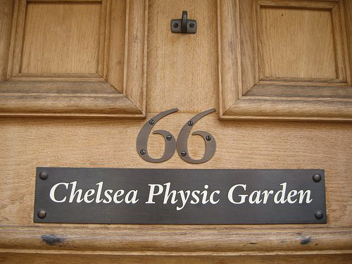 Chelsea Physic Garden Christmas Fair 2012
