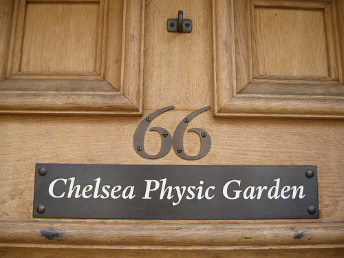 Chelsea Physic Garden London Christmas Fair