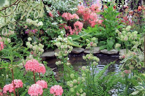 Beautiful Gardens Chelsea Flower Show