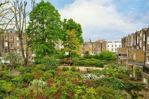 Holland Park Mews Garden