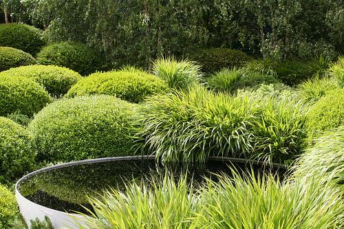 Chelsea Flower Show Garden Visit