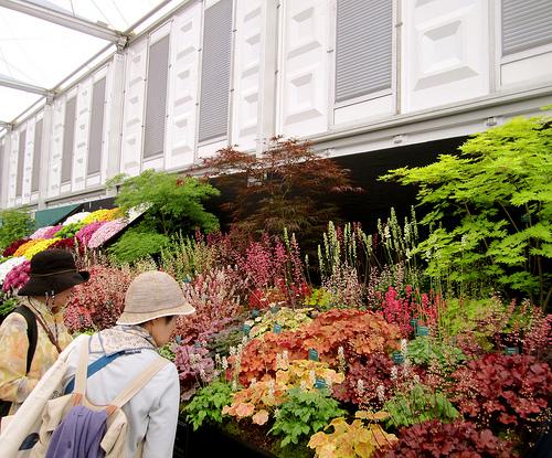 Chelsea Flower Show in London