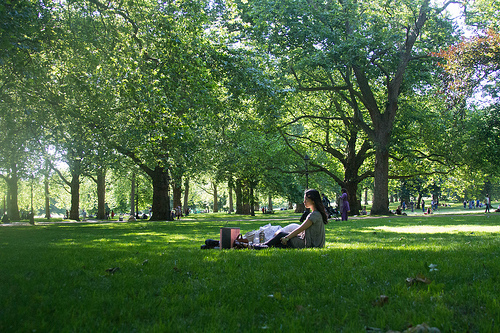 An August picnic in London's lovely Green Park