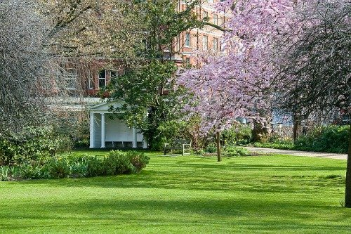 London's Open Garden Squares Weekend 2013