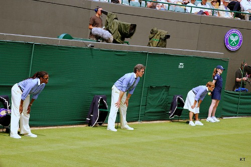 Wimbledon Line Judges