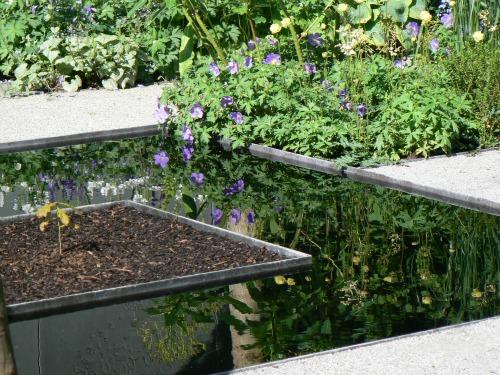 Cheslea Flower Show Tranquil Garden