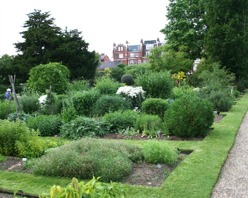 Chelsea Physic Garden London