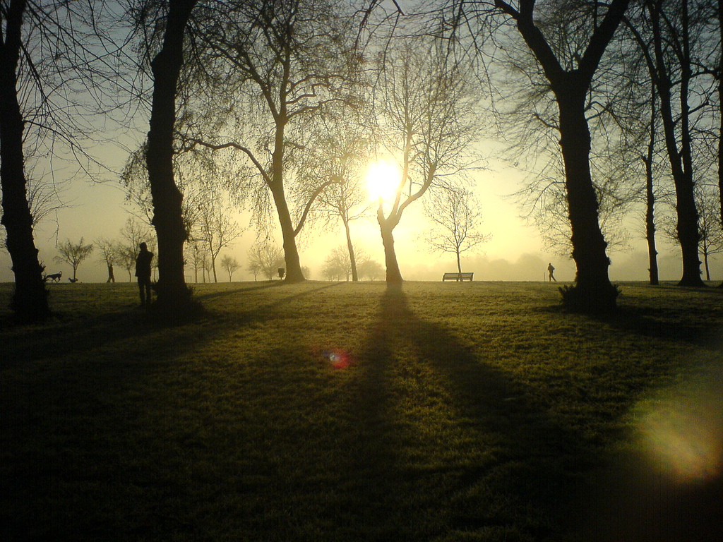 A glorious autumn morning at Victoria Park in East London. After a crisp morning wander you'll need somewhere warm and welcoming to go home to.
