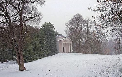 Kew Gardens Winter