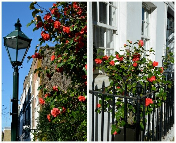 Chelsea London in the Spring