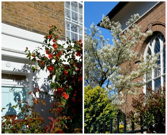 Springtime in Chelsea London