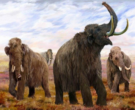 Woolly Mammoths Illustration by Velizar Simeonovski The Field Museum