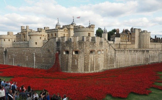 A Dramatic Field of Poppies at the Tower of London