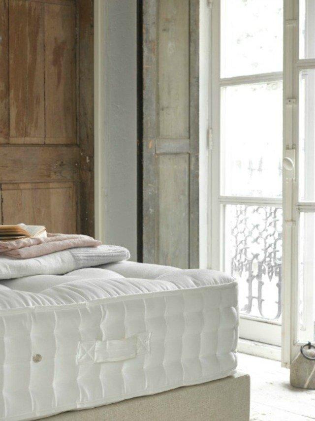 Charlie Marshall Loaf - Top Dog mattress