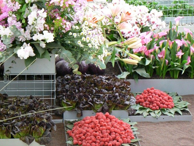 Chelsea Flower Show Fruit and Vegetables