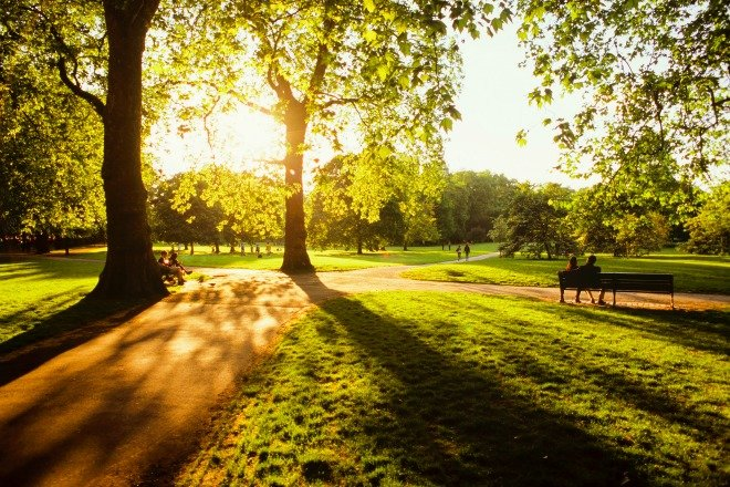 Bask in the beauty of June sunshine in London's Green Park