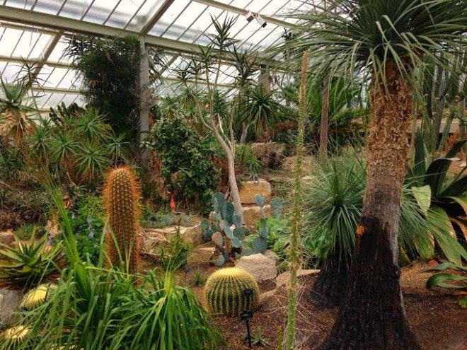 Inside the Princess of Wales Conservatory.