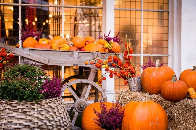 Carve Pumpkins in Style at the Bluebird In Chelsea