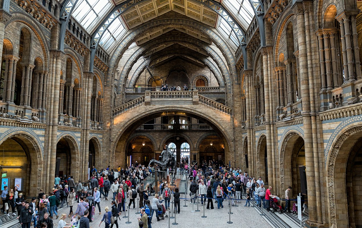 Top 3 Museums For Families In London