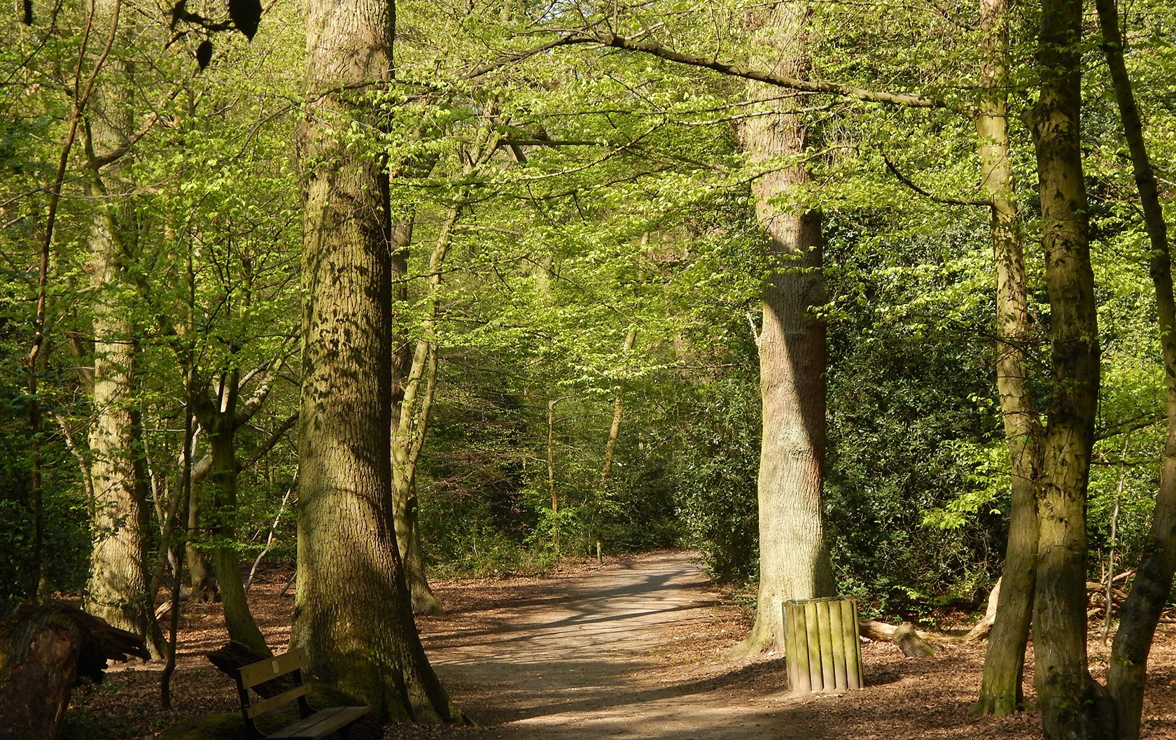 guide to Highgate London parks