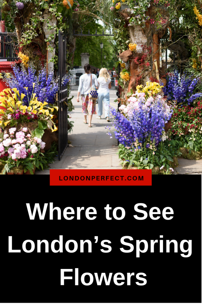 Where to See London's Spring Flowers by London Perfect