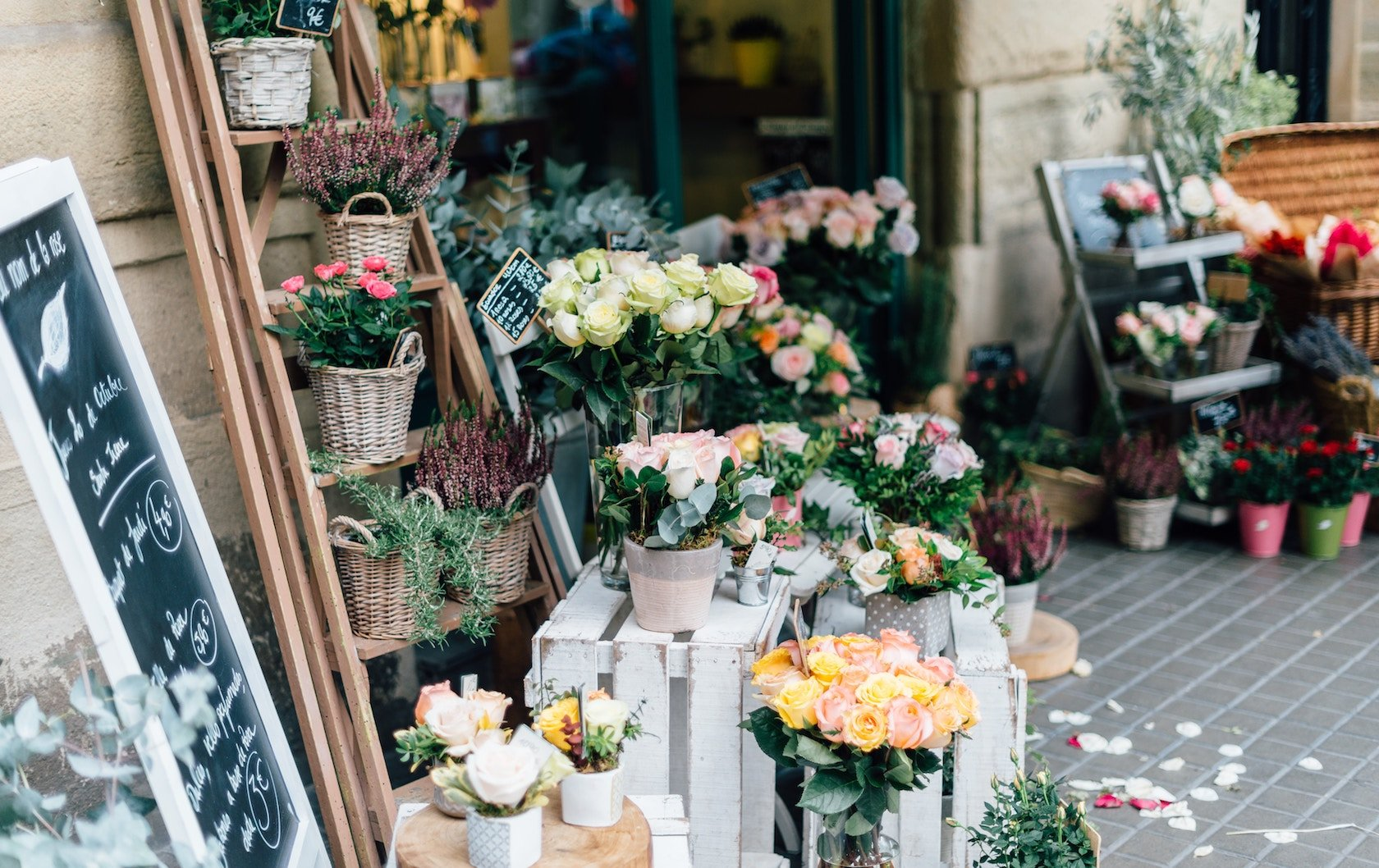 London's Spring Flowers by London Perfect