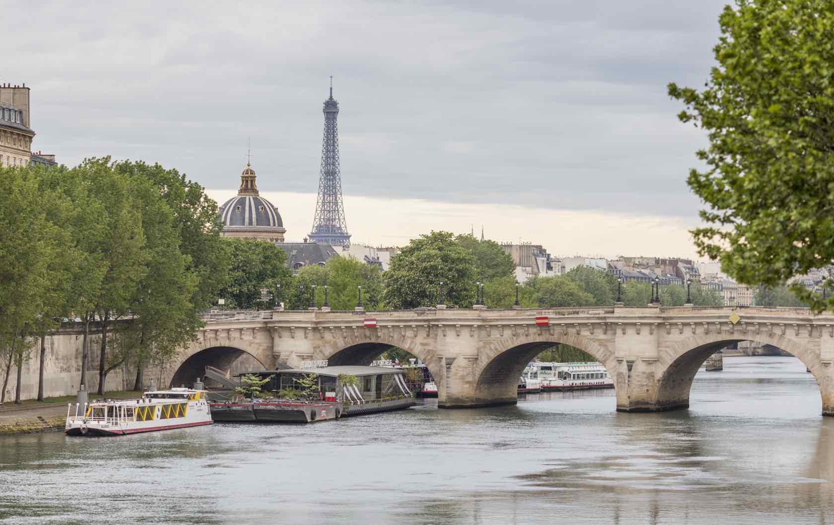 Seine River with Eiffel Tower in Summer