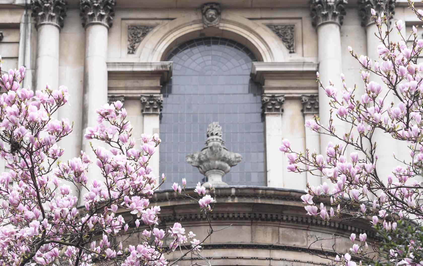 London in springtime flowers