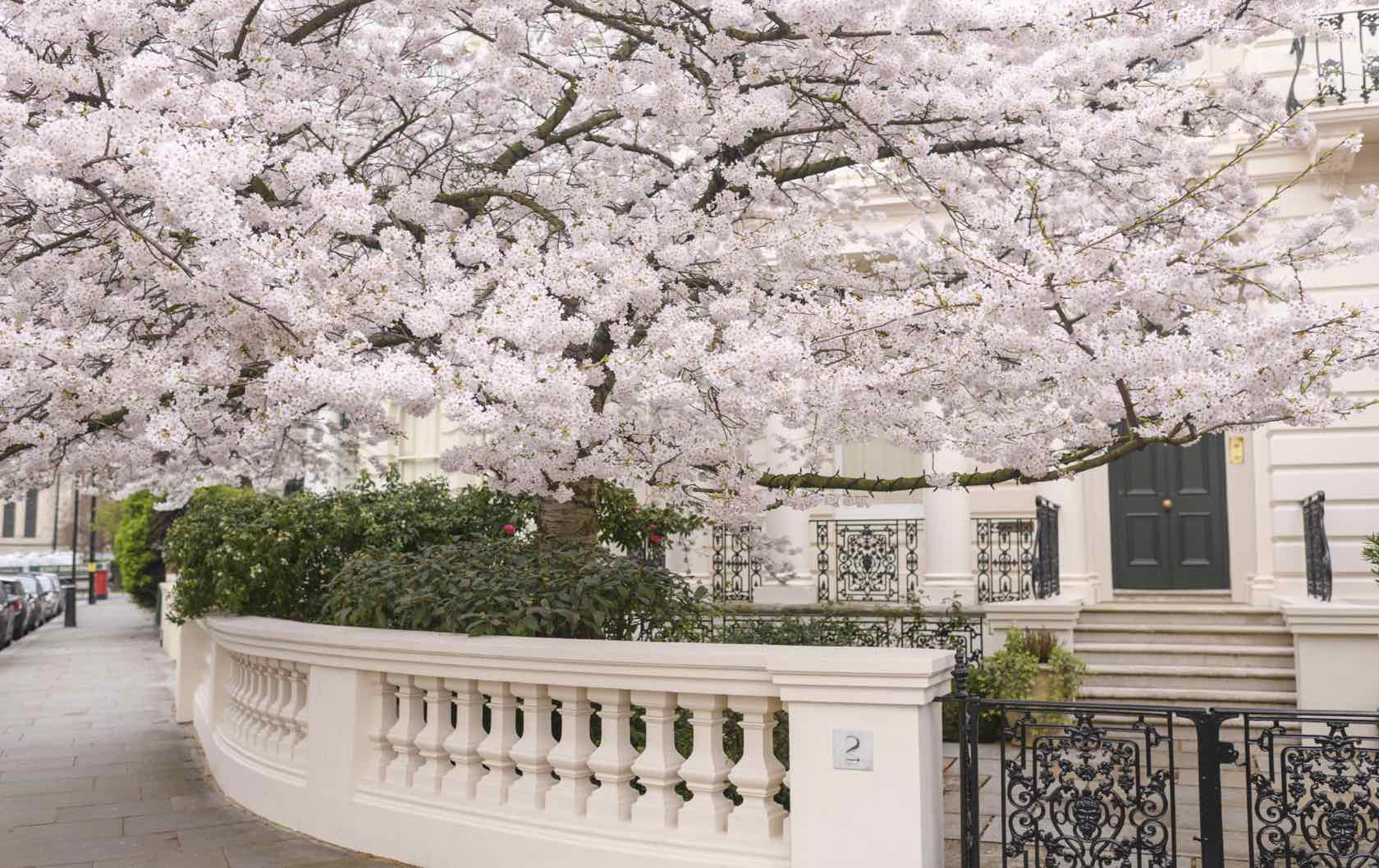 Spring in Notting Hill London