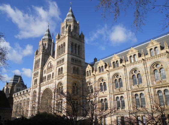 Walk to the Natural History Museum in South Kensington