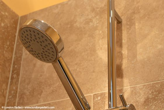Shower with fixed and flexible showerheads