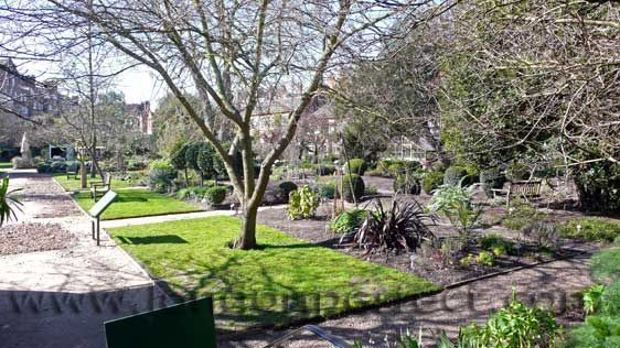 Visit the historic Chelsea Physic Garden nearby