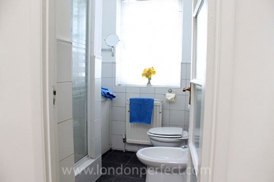 Second full bathroom with shower, toilet, bidet and sink