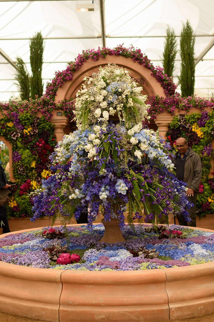 Beautiful flower displays at the Chelsea Flower Show