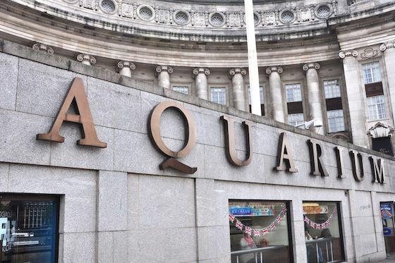 Visit the wonderful London Aquarium