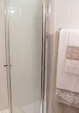 Step in shower with glass doors and flexible showerhead