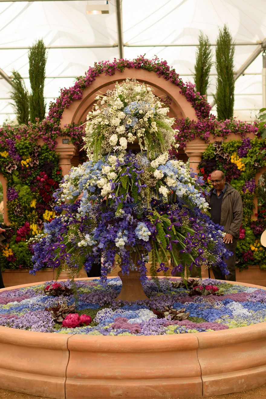 Beautiful floral displays at the Chelsea Flower Show