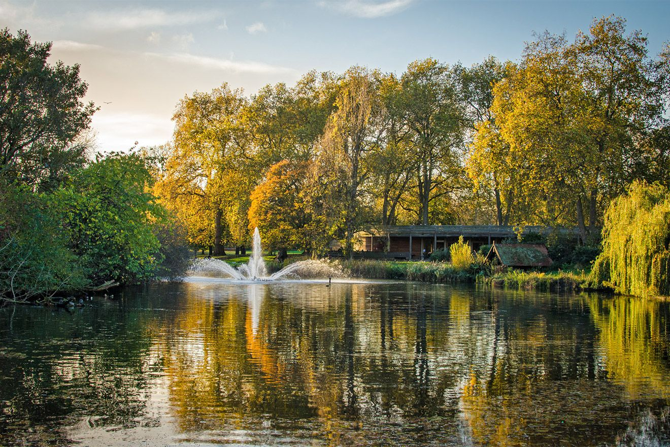 Saint James Park in the Autumn in London