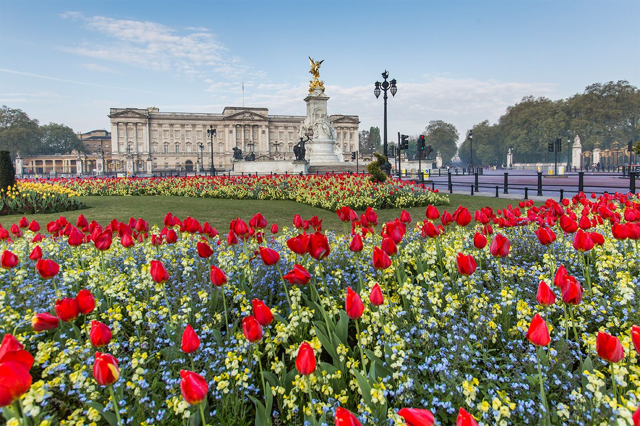 Buckingham Palace Exterior with flowers