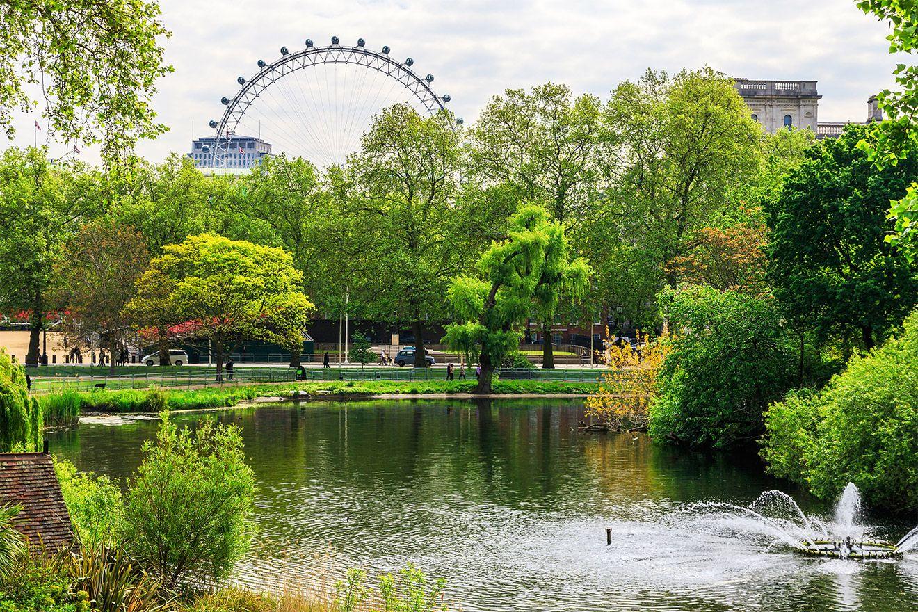 Saint James Park view of London Eye