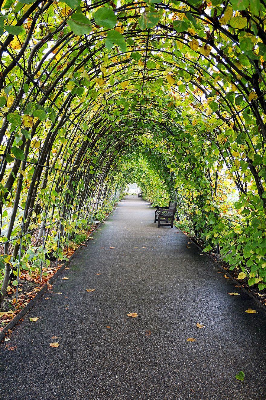 Kensington Gardens arch