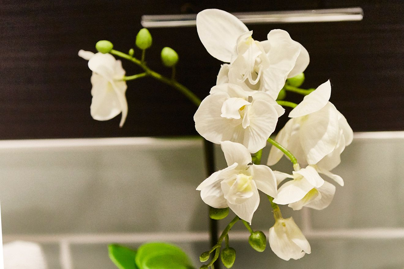 Delicate orchids in the bathroom of the Danebury vacation rental offered by London Perfect