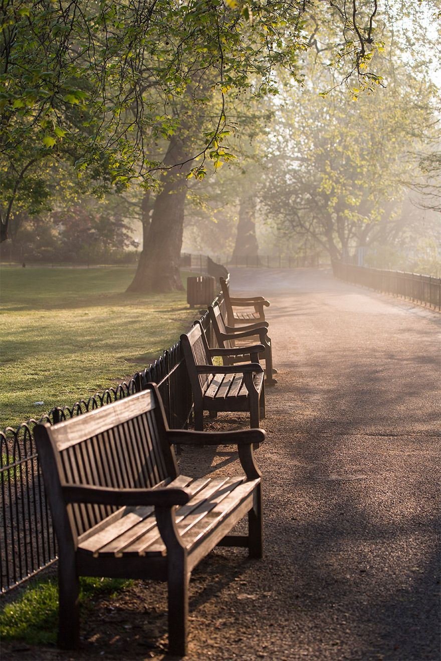 Misty morning in Saint James park next to Buckingham Palace