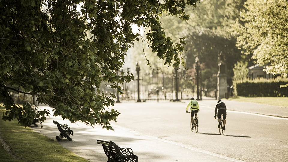Bicycle Tours in London